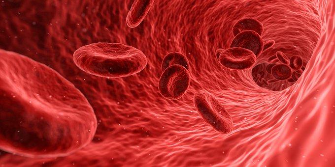 14-го июня: день скидок на анализы крови
